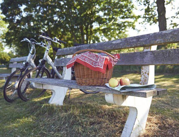 fietsen delden